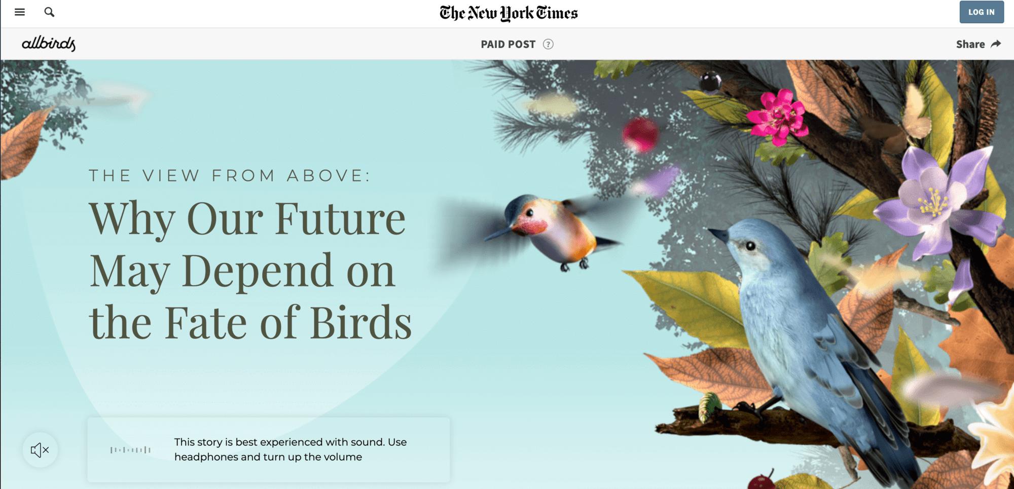 Die besten interaktiven Inhalte: Allbirds